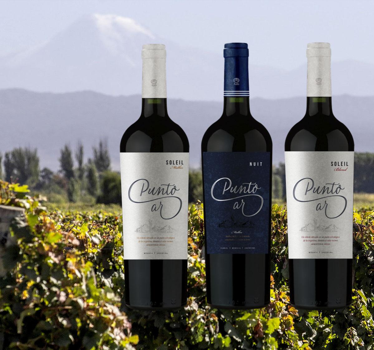 Probierpaket 9 - Kennenlernen des Weingutes A16