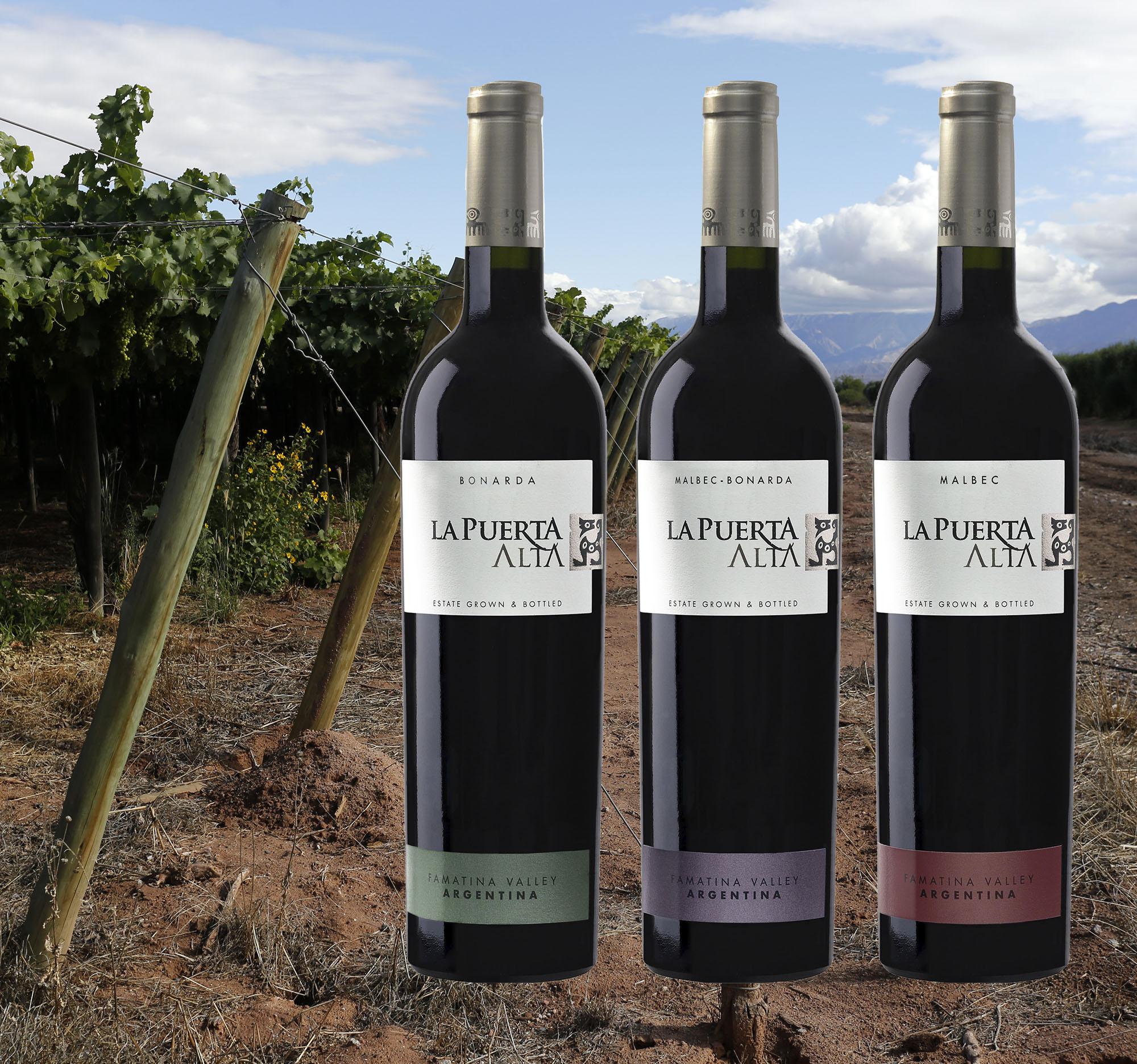 Probierpaket 2 - Drei große Weine aus La Rioja