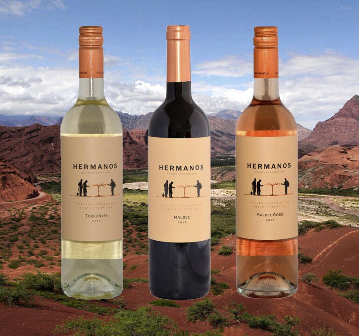 Probierpaket 8 - Weine aus den höchstgelegenen Regionen Argentiniens.