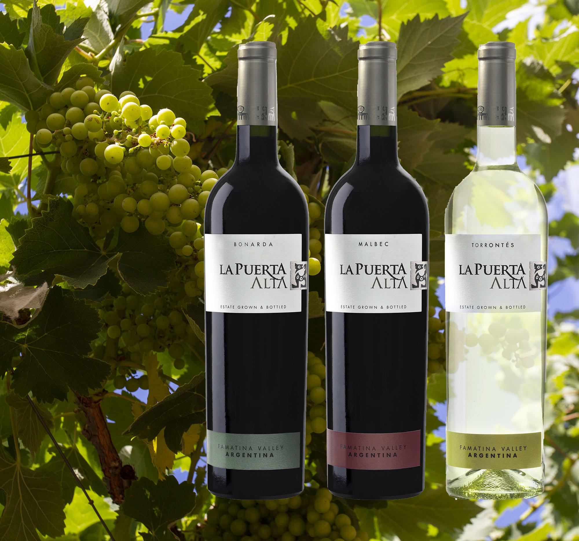 Probierpaket 3 - Drei emblematische Sorten von Argentinien.