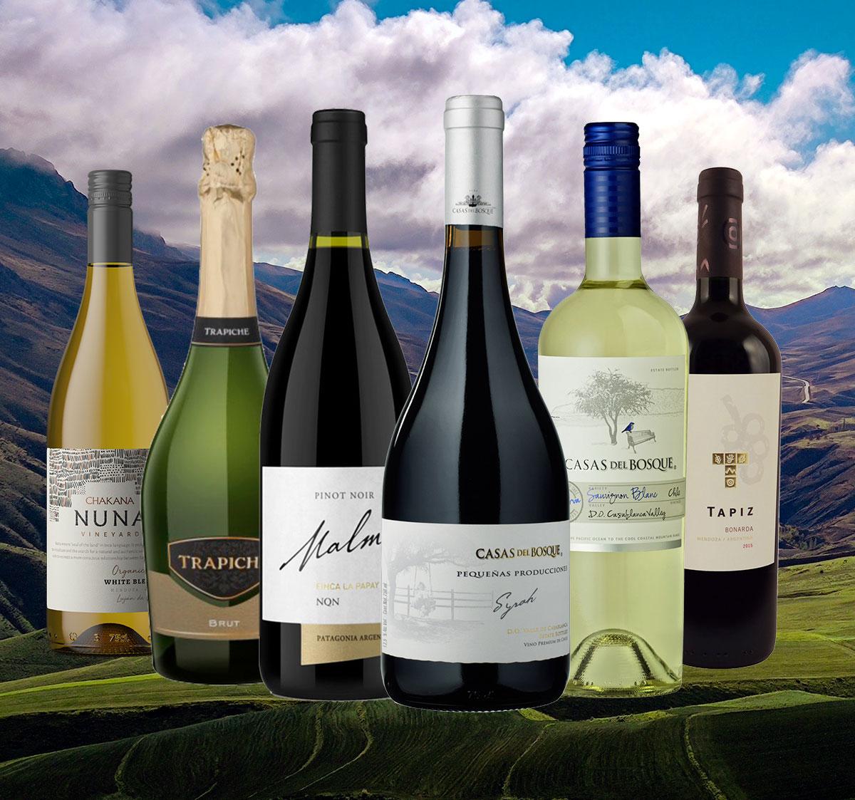 Saisonwein-Pakete: Das Beste aus Argentinien und Chile