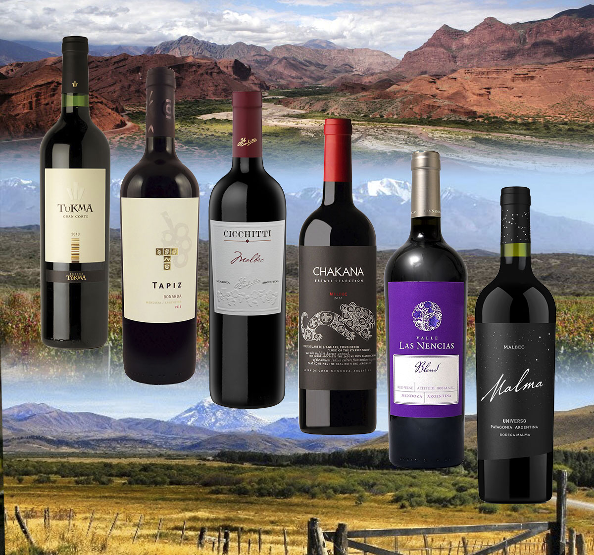 Probierpaket 10 Eine besondere Auswahl typischer argentinischer Weine.