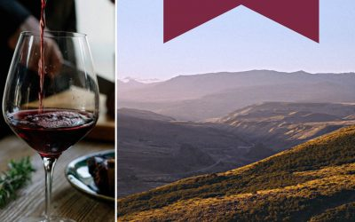 Patagonien: Weine mit einem perfekten Gleichgewicht zwischen Farbe und Struktur.