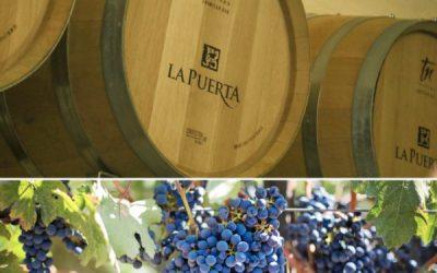 Weingut Valle de La Puerta: Ausgezeichnetes Preis-Leistungs-Verhältnis.